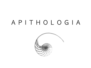 apilogo1